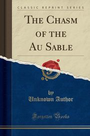 The Chasm of the Au Sable (Classic Reprint), Author Unknown