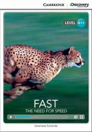 Fast: The Need for Speed, Kocienda Genevieve